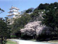 明石城と明石公園の写真